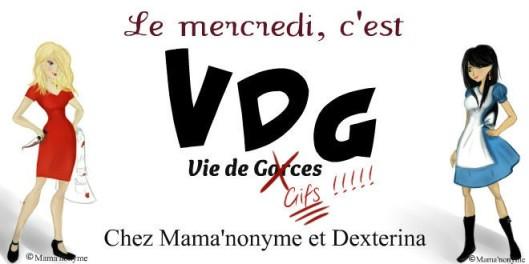 VDG dext VI signé (1)
